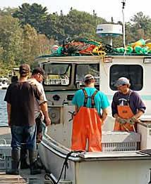 Lobstermen in Rockport Harbor